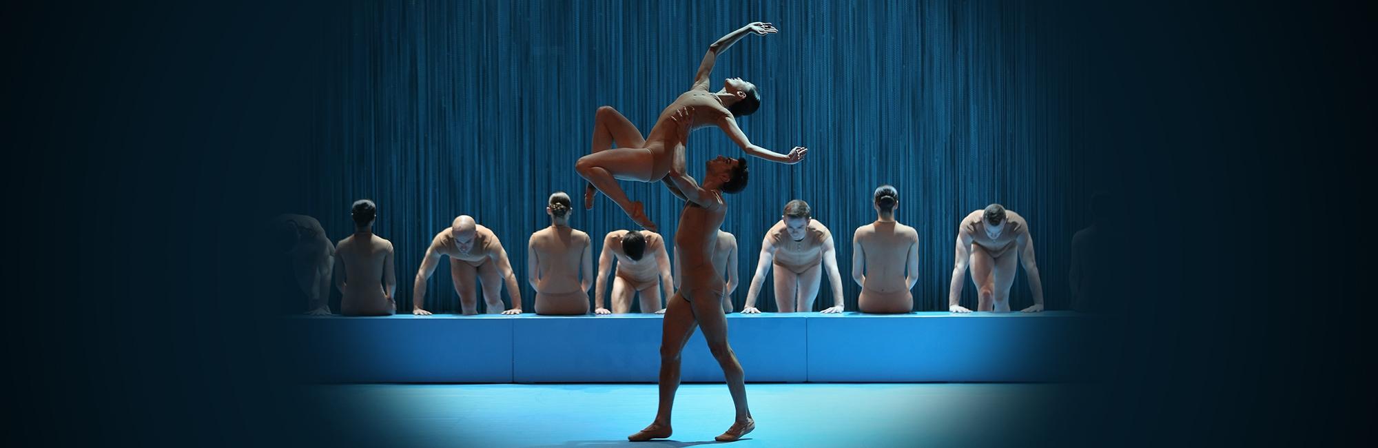 Maison De La Danse Spectacle Sortir Lyon Kabel Rca 3 Ke Male Kitani Sj0039 No